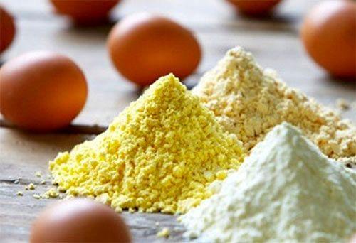 طرح توجیهی تولید پودر و مایع تخم مرغ
